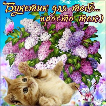 Открытка для Тебя, сирень, котенок, котик, цветы, весна, картинка Тебе, просто так, от всей души, для Тебя! скачать открытку бесплатно | 123ot