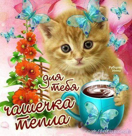 Открытка для Тебя, котенок с кофе, цветы, картинка Тебе, просто так, от всей души, для Тебя! скачать открытку бесплатно | 123ot
