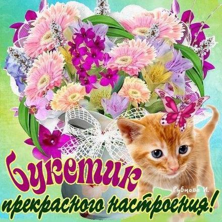 Открытка для Тебя, картинка Тебе, цветы, котик, просто так, от всей души, для Тебя! скачать открытку бесплатно | 123ot