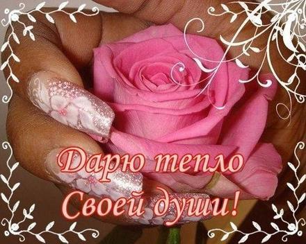 Открытка для Тебя, картинка Тебе, розы, просто так, от всей души, для Тебя! скачать открытку бесплатно | 123ot