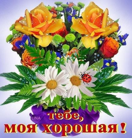 Открытка для Тебя, моя хорошая, букет цветов, розы, картинка Тебе, просто так, от всей души, для Тебя! скачать открытку бесплатно | 123ot