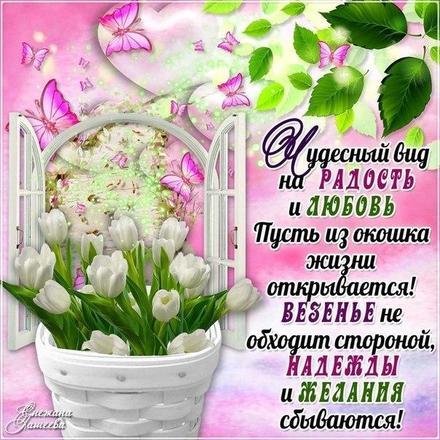 Открытка для Тебя, подснежники, стих, бабочки, цветы, весна, картинка Тебе, просто так, от всей души, для Тебя! скачать открытку бесплатно | 123ot