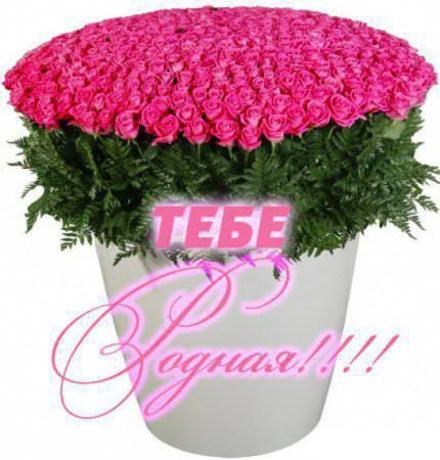 Открытка для Тебя, огромное ведро роз, шикарный букет, картинка Тебе, просто так, от всей души, для Тебя! скачать открытку бесплатно | 123ot