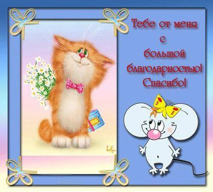 Открытка для Тебя, картинка Тебе, ромашки, просто так, от всей души, для Тебя! Котенок, мышь. скачать открытку бесплатно | 123ot