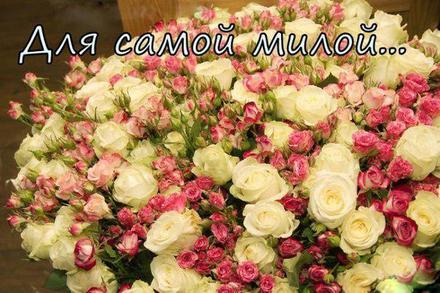 Открытка для Тебя, для самой милой, букет цветов, роз, картинка Тебе, просто так, от всей души, для Тебя! скачать открытку бесплатно | 123ot