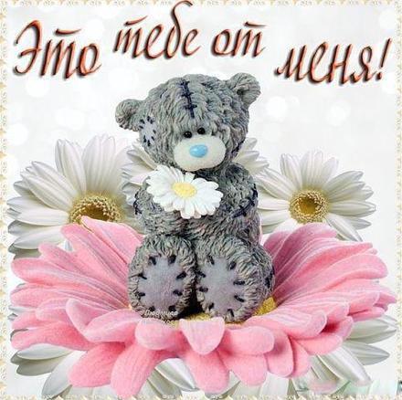 Нежная открытка для Тебя, картинка Тебе, медвежонок тедди, просто так, от всей души, для Тебя! скачать открытку бесплатно   123ot