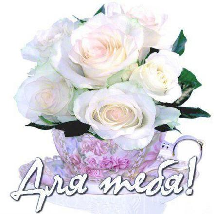 Нежная открытка для Тебя, картинка Тебе, белые розы, просто так, от всей души, для Тебя! скачать открытку бесплатно   123ot
