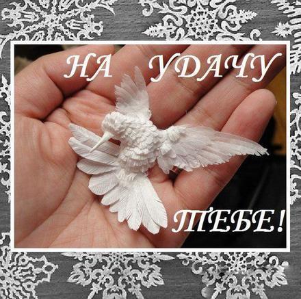 Открытка для Тебя, на удачу, картинка Тебе, белый голубь, просто так, от всей души, для Тебя! скачать открытку бесплатно | 123ot