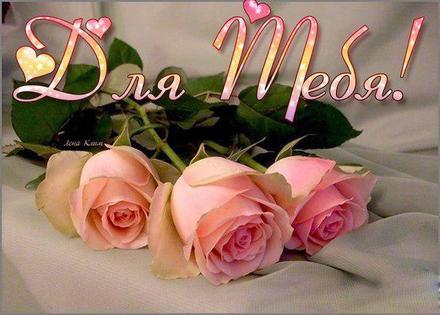 Нежная открытка для Тебя, три розы тебе, картинка Тебе, просто так, от всей души, для Тебя! скачать открытку бесплатно | 123ot