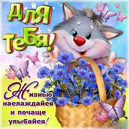 Открытка для Тебя, кот, кот и цветы, картинка Тебе, просто так, от всей души, для Тебя! скачать открытку бесплатно | 123ot