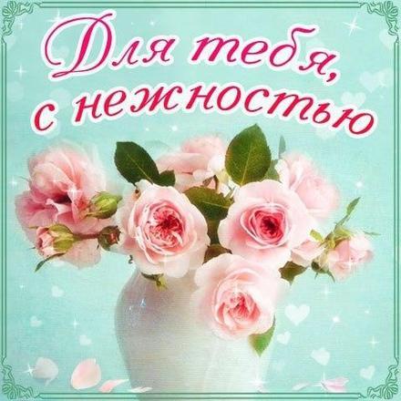 Нежная открытка для Тебя, с нежностью, розы, картинка Тебе, просто так, от всей души, для Тебя! скачать открытку бесплатно | 123ot