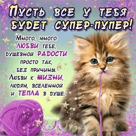 Открытка для Тебя, картинка Тебе, стих, кот, просто так, от всей души, для Тебя! скачать открытку бесплатно | 123ot