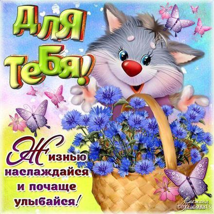 Открытка для Тебя, картинка Тебе, котик, цветы, просто так, от всей души, для Тебя! скачать открытку бесплатно   123ot