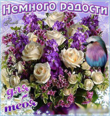 Открытка немного радости для Тебя, розы, сирень, картинка Тебе, просто так, от всей души, для Тебя! скачать открытку бесплатно | 123ot