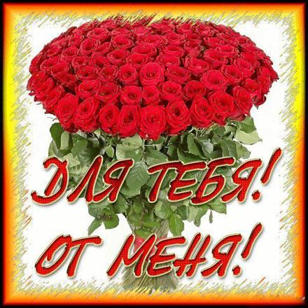 Открытка для Тебя от меня, большой букет красных роз, картинка Тебе, просто так, от всей души, для Тебя! скачать открытку бесплатно | 123ot