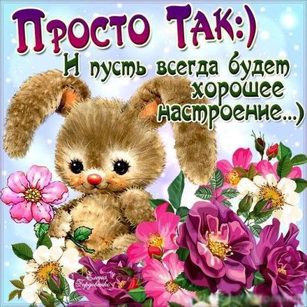 Открытка для Тебя, зайка, цветы тебе, картинка Тебе, просто так, от всей души, для Тебя! скачать открытку бесплатно   123ot
