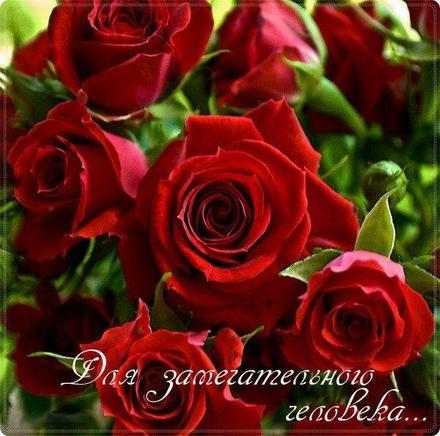Открытка для Тебя, красные розы, розочки, живые цветы, картинка Тебе, просто так, от всей души, для Тебя! скачать открытку бесплатно   123ot