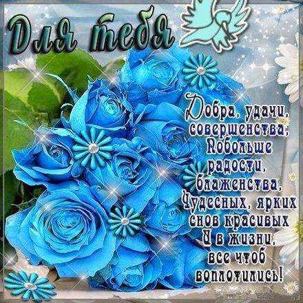Открытка для Тебя, картинка Тебе, просто так, от всей души, для Тебя! Розы! Синие розы! скачать открытку бесплатно | 123ot