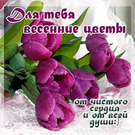 Открытка для Тебя, весенние цветы, картинка Тебе, просто так, от всей души, для Тебя! скачать открытку бесплатно | 123ot