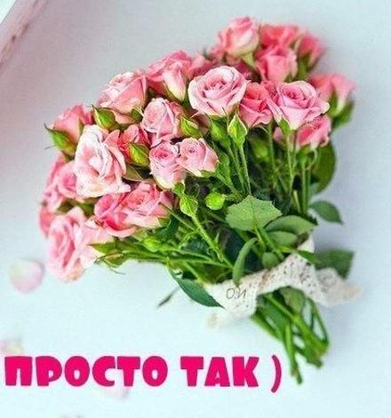 Открытка для Тебя, букет розовых роз, розы, картинка Тебе, просто так, от всей души, для Тебя! скачать открытку бесплатно | 123ot
