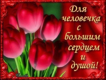 Жаркая открытка для Тебя, красные тюльпаны, картинка Тебе, просто так, от всей души, для Тебя! скачать открытку бесплатно | 123ot