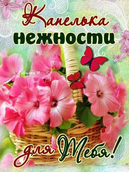 Нежная открытка для Тебя с цветами и бабочками, картинка Тебе, просто так, от всей души, для Тебя! скачать открытку бесплатно | 123ot