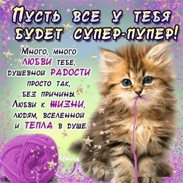 михайличенко лучшие поздравления просто так стихи тех осмотре так