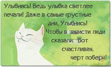 Открытка улыбнись, улыбайся, для Тебя, где твоя улыбка! Открытка с прикольной белой кошкой! Открытка с белым котом! скачать открытку бесплатно | 123ot