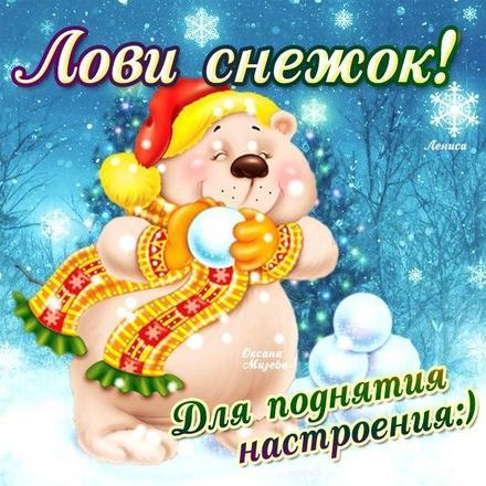 Открытка улыбнись, улыбайся, для Тебя, где твоя улыбка! Зимняя открытка! Лови снежок! Зимний мишка. Белый медведь! скачать открытку бесплатно | 123ot