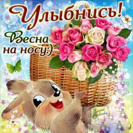 Открытка улыбнись, улыбайся, для Тебя, где твоя улыбка! Открытка с корзиной роз и зайчиком! скачать открытку бесплатно | 123ot