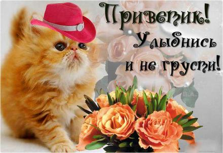 Открытка улыбнись, улыбайся, для Тебя, где твоя улыбка! Открытка с милым котиком в шляпке и цветами! скачать открытку бесплатно   123ot