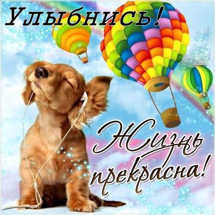 Открытка улыбнись, улыбайся, для Тебя, где твоя улыбка! Собачка в наушниках, воздушные шары! скачать открытку бесплатно | 123ot