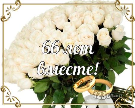 С годовщиной свадьбы 66 лет! Впечатляющая, манящая, талантливая открытка, картинка! скачать открытку бесплатно | 123ot