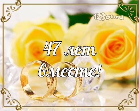 С годовщиной свадьбы 47 лет! Оригинальная, достойная, милая открытка, картинка! скачать открытку бесплатно | 123ot